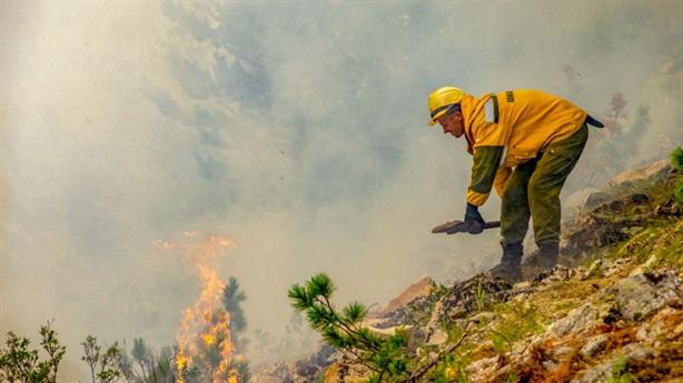 Cháy rừng Siberia khiến sản xuất dầu Nga liêu xiêu