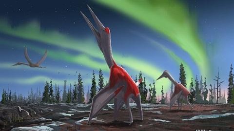 Phát hiện loài 'rồng' khổng lồ to như máy bay hiện đại