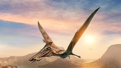 Phát hiện loài quái vật khổng lồ từng thống trị bầu trời