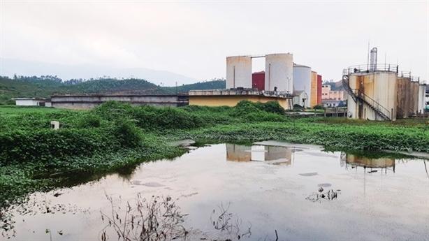 Chưa rõ nguyên nhân tràn dầu tại Nhà máy Ethanol Quảng Nam