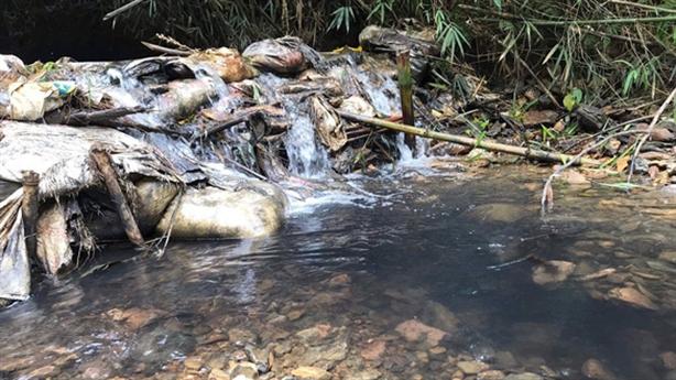 Vụ nước Hà Nội có mùi: 'Ai duyệt công nghệ lọc nước?'