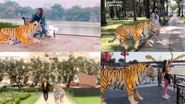 5 địa điểm vàng bắt trend khoe cá tính với hổ