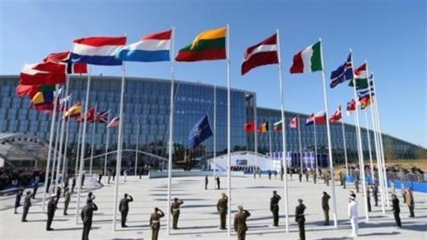 Chính ông Putin làm NATO 'chết não', thành xác không hồn