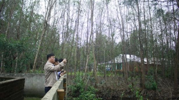 Nhiều vườn cây chết hàng loạt quanh nhà máy thép Hòa Phát