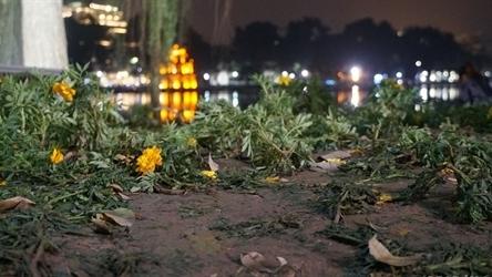 Giẫm đạp vườn hoa quanh hồ Gươm: Có trích xuất camera phạt?