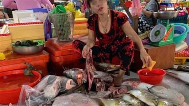 Tiểu thương xẻ thịt rùa xanh quý hiếm bán giữa chợ