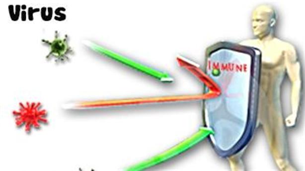 Virus corona (Covid-19) sống sót trong nhiệt độ bao nhiêu?
