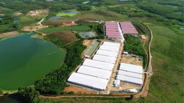 Xử phạt Dabaco Việt Nam 300 triệu vì vi phạm môi trường