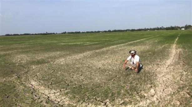 Đào hồ chống hạn mặn ở miền Tây Nam Bộ