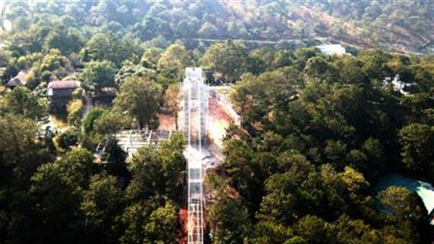 Vụ phá rừng thông xây cầu du lịch: Đang tháo dỡ?