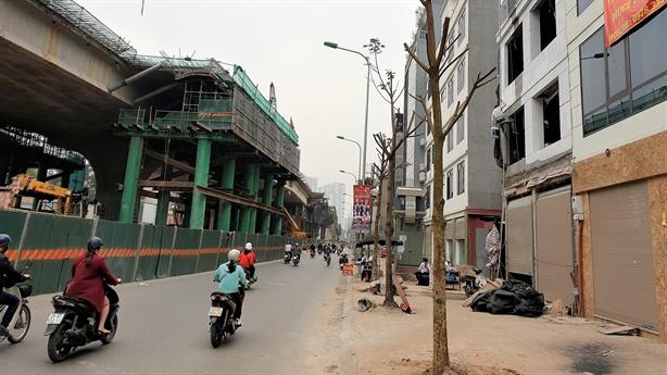Sấu mới trồng chết khô giữa Hà Nội: Quên không tưới?