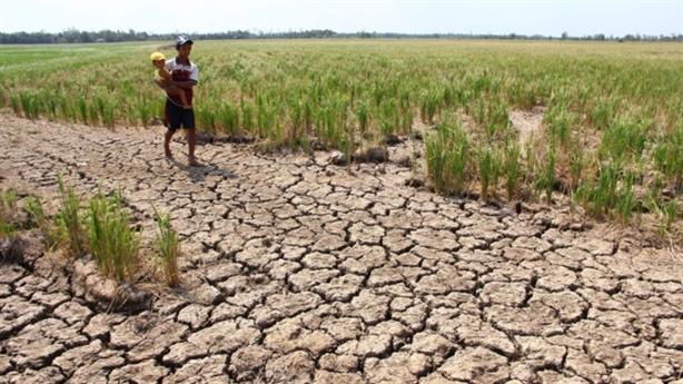 Côn Đảo và bài toán nước ngọt cho vùng mặn ĐBSCL