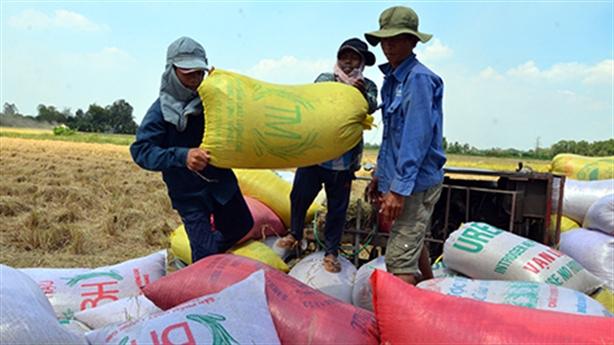 Bộ Công thương kiến nghị tiếp tục xuất khẩu gạo