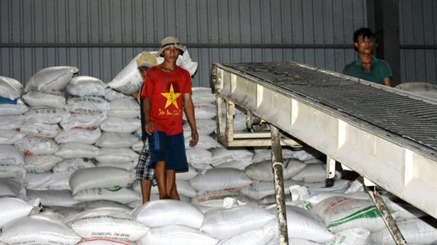 Cân nhắc xuất khẩu gạo: Tính toán kỹ lưỡng...