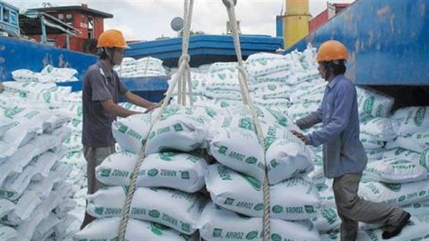 Niềm tin gạo Việt sắp thẳng đường xuất ngoại