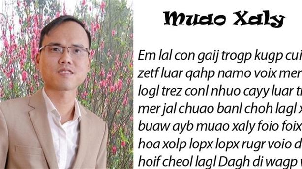 Chữ Việt Nam song song 4.0: 'Độc giả hiểu nhầm tôi'
