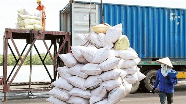 Trung Quốc đổi chiều, chi đậm mua gạo Việt Nam