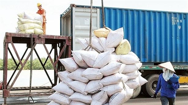 Hai bộ bị phê bình, thanh tra việc xuất khẩu gạo