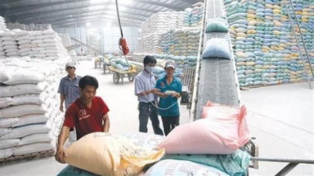 Kiến nghị điều tra xuất khẩu gạo: Không sợ bị 'oan'...