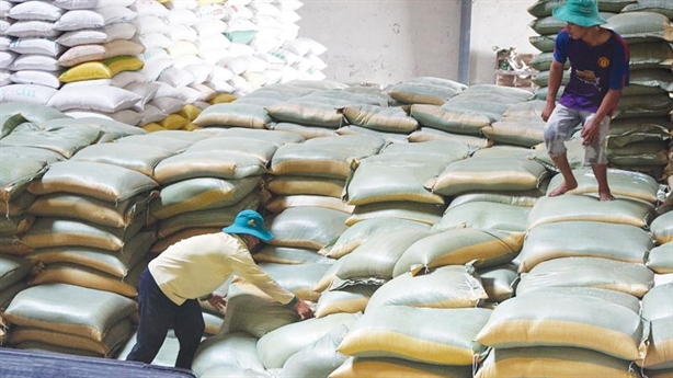 Dự trữ gạo Nhà nước: Đình chỉ 7 cục trưởng