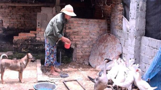 Ninh Thuận sai phạm trong chi trả hỗ trợ Covid-19: Giải thích