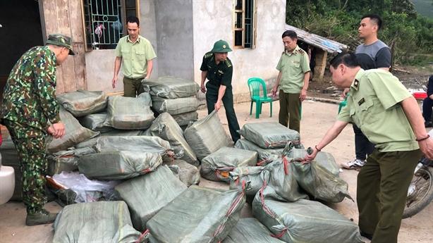 Nầm lợn thối Trung Quốc bị bắt ngay ở Lạng Sơn