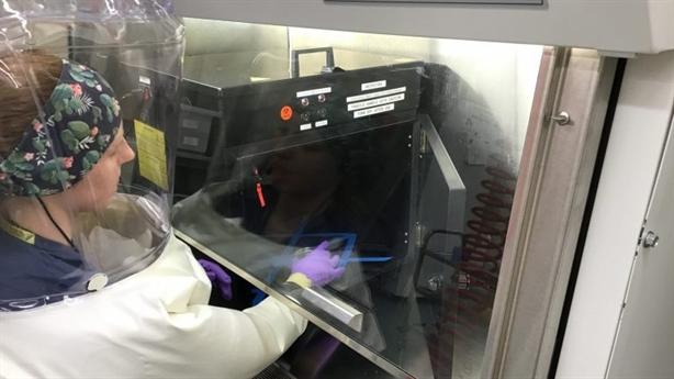 Signify ra mắt loạt sản phẩm khử khuẩn diệt 99,9% vi rút