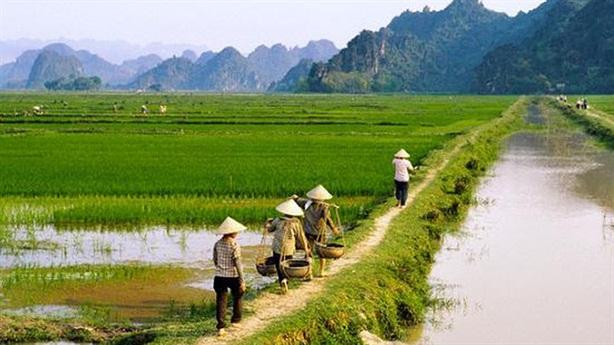 Hoàn thiện cơ chế hoạt động thị trường quyền sử dụng đất
