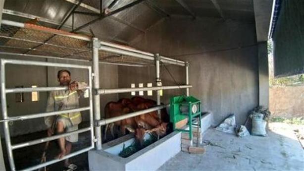 Chuồng bò 510 triệu ở Nghệ An: Sao nhiều tiền thế?