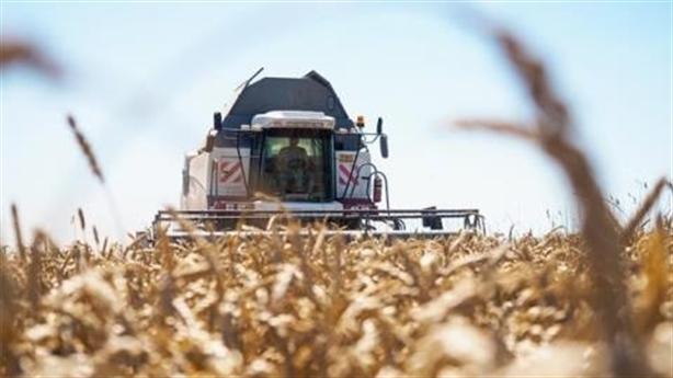 Phương Tây lo Nga thống trị thế giới bằng lúa mì?