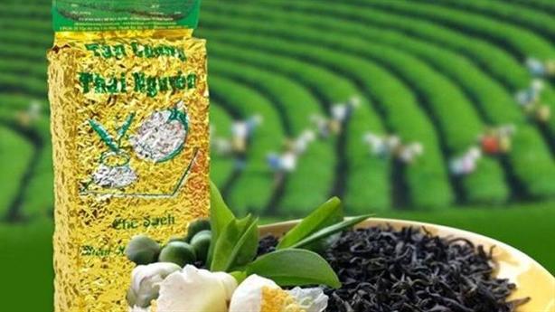 Chè Thái Nguyên – Dòng Chè thơm ngon nhất định phải thử