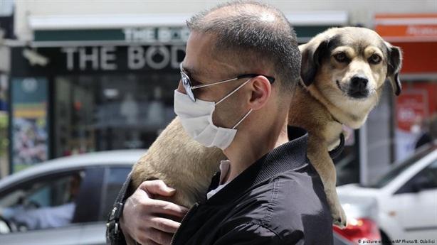 Nga nghiên cứu vaccine COVID-19 cho thú cưng