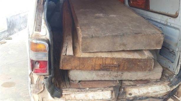 Chủ tịch xã bắt gỗ lậu mang biếu: Vẫn làm chủ tịch