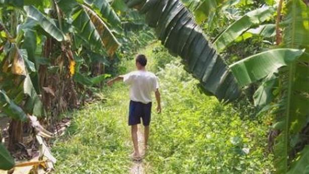 Bắt nghi phạm hiếp dâm bé gái trong vườn chuối