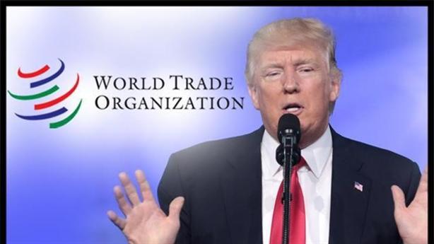 WTO ra phán quyết, ông Trump sẽ ra tay hành động?
