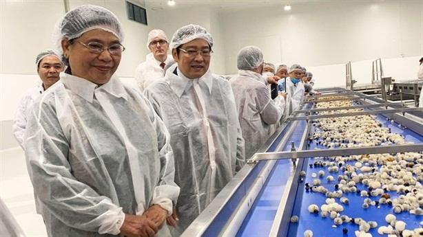 Nhà máy chế biến hoa quả tươi 3.500tỷ: Niềm vui vững chắc