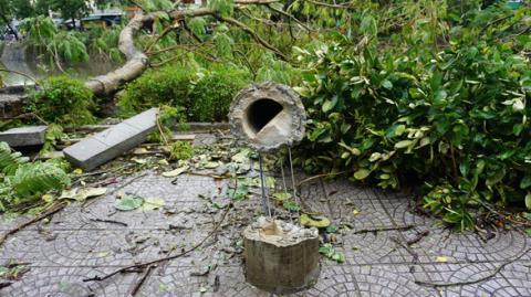 Thừa Thiên-Huế dừng dùng cột điện dự ứng lực: Lỗi do đâu?