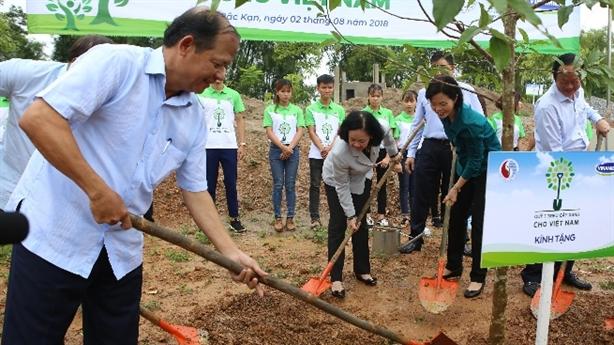 Vinamilk cùng người dân trồng cây gây rừng, tạo sinh kế
