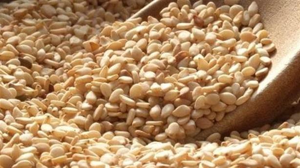 5 loại hạt tác dụng tốt đối với sức khỏe con người