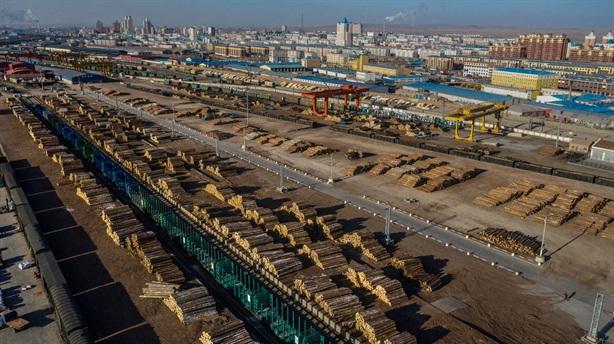 Trung Quốc chính thức cấm nhập gỗ Úc