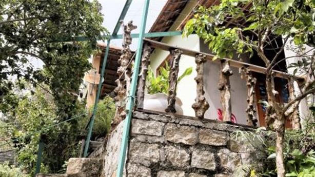 Biệt phủ trên đất lâm nghiệp: Chủ nhân phân trần