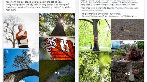 Thêm hàng ngàn cây xanh cho chiến dịch