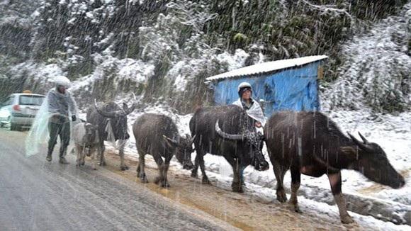 Đêm 7/1: Nhiệt độ tại Mẫu Sơn giảm còn 0-2 độ C