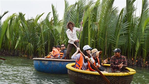 Không đổi 1ha rừng dừa Cẩm Thanh lấy dự án: Kịp thời