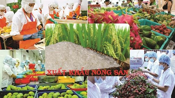 Việt Nam sẽ xuất khẩu tổ yến sang Trung Quốc