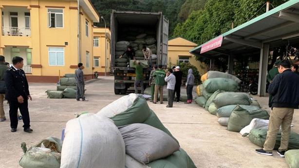 Bất ngờ lời khai trùm buôn lậu 5.000 tấn thuốc bắc