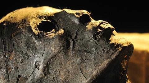 Xác ướp bị chặt đầu: Tìm ra bí mật giấu trăm năm