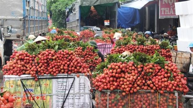 Tiêu thụ nông sản Bắc Giang: Lời đề nghị với DN logistics