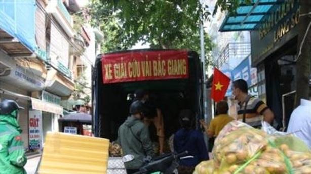 Dân Hà Nội xếp hàng giải cứu vải Bắc Giang: Sự thật....