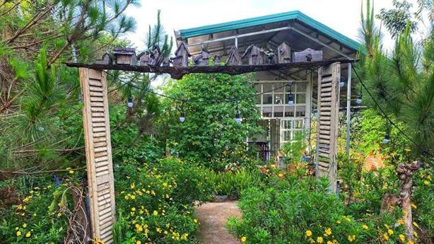 Giá phòng Phú Quốc, Đà Lạt như nhà trọ để níu khách